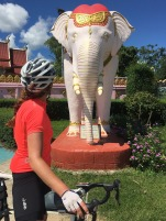 Sandra and the Elephant