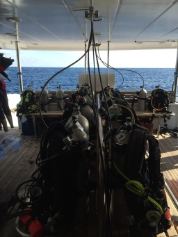 All our diving gear was set out with lots of spare space - a great advantage of going in the low season