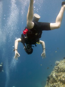 Diving is fantastic