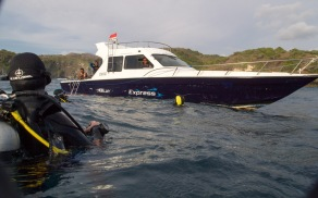 Surfacing after a challenging surge-dive