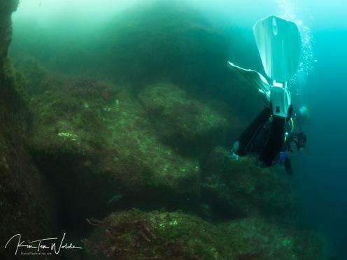 The landscape underwater is amazing!