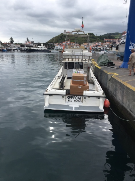 Reefcat - a bit out of balance, which caused Duarte to want to move the pallets 3 times
